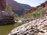 Ormiston-Waterhole-and-Gorge