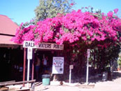 Daly Waters Pub Stuart Highweay on the Explorers Way Alice Springs to Darwin Northern Territory Australia